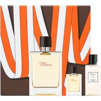 Hermes Gift Set Terre D´Hermes Eau de toilette 100 ml + After Shave 40 ml + Miniature 5 ml
