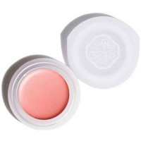 Shiseido Paperlight Cream Eye Color N OR707 Sango Coral